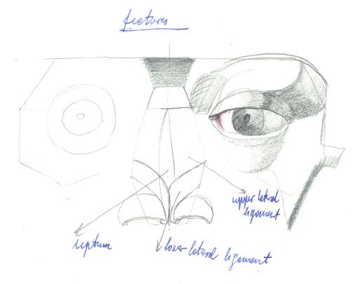 Neustrašivo oko - tečajevi crtanja i slikanja
