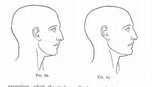 neustrasivo-oko-lanteri-kako-nacrtati-uho