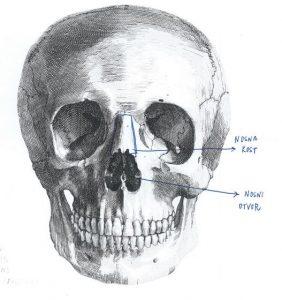 neustrasivo-oko-lubanja-nosna-kost-i-otvor