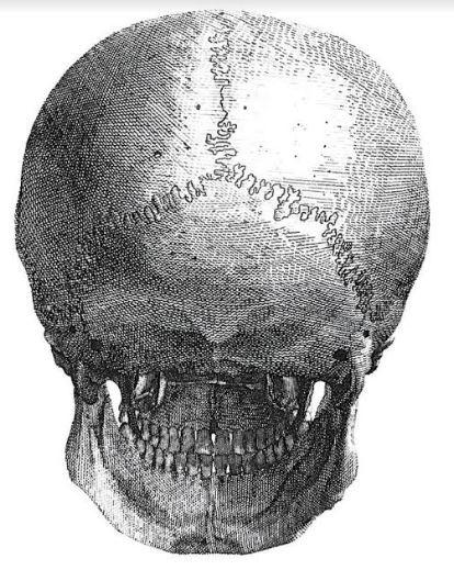 Kako nacrtati portret odnosno ljudsku glavu