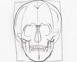 neustrašivo oko-lubanja-kompletna-zubi-celjust