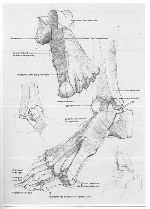 Kako nacrtati stopalo (peti dio)