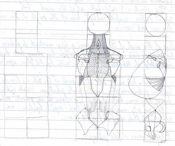 Rameni pojas- najteža stvar koju ste ikad poželjeli nacrtati